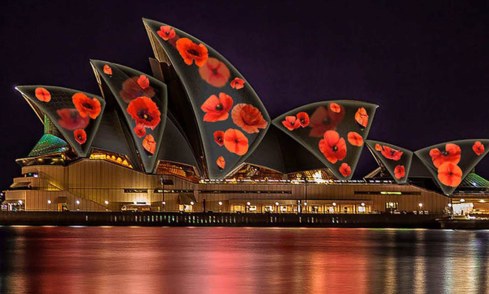 POPPIES RETURN TO THE SYDNEY OPERA HOUSE